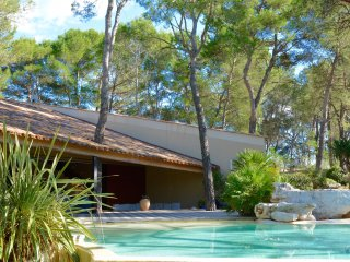 STUNNING EXOTIC VILLA  WITH INFINITY POOL AND VIEWS IN MONTPELLIER, Montferrier Sur Lez