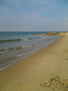 Sandy beach next to the property