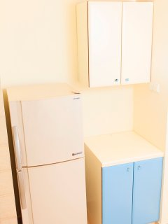 The Sharp, silver ion technology fridge.