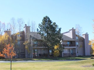 Aspen Grove offers a relaxing vacation in this cozy condo located in Pagosa, Pagosa Springs