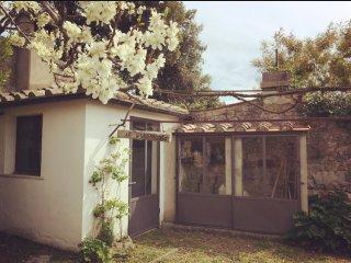 Casa Vacanze 'La Principessa Etrusca'