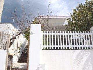 Seccagrande #11227.2, Ribera
