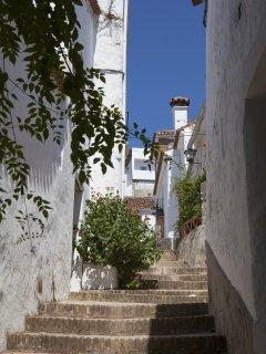 Local village street