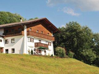 4 bedroom Villa in Hopfgarten, Tirol, Austria : ref 2224998