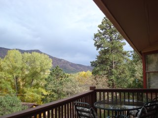 MOUNTAIN VIEW FROM THE FRONT DECK