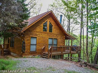 Breezy Mountain View- 2 BEDROOM, 2 BATH, SLEEPS 6, CABIN HAS A BEAUTIFUL, Blue Ridge
