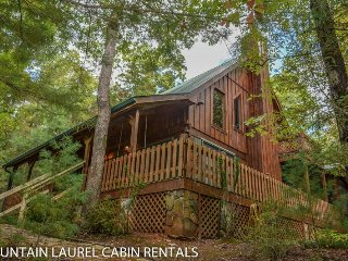 CHASING RAINBOWS- 4 BEDROOM/2 BATH CABIN FEATURING THE PRIVATE SLEEPING, Blue Ridge