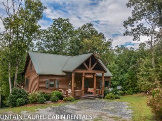 RUNABOUT TROUT LODGE-4BR/3.5BA CABIN ON THE TOCCOA RIVER,SLEEPS 12, EXCELLENT
