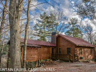 ANGLER`S REST- ADORABLE 2BR/1BA CABIN WITH A BREATHTAKING MOUNTAIN VIEW, PET