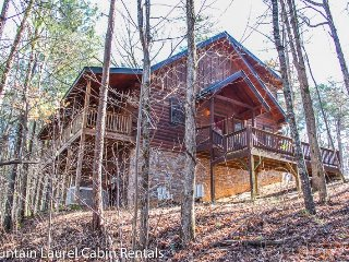 THE GREAT ESCAPE- 3 BR/3BA, SLEEPS 9, WOOD BURNING FIREPLACE, HOT TUB, PING