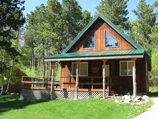 Cozy Black Hills Retreat