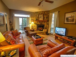2BR Cozy Condo at Yonahlossee, Near Blowing Rock & Boone!, Wood Burning