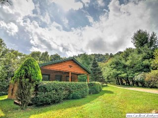 1BR Getaway Cabin, Hot Tub, Privacy, Valle Crucis, Walk to Watauga River, Near