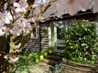 Cissbury Cottage, Steyning
