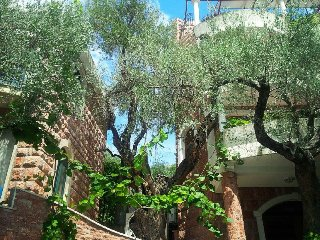 1/2 Twin Room  n.12 balcony park view, Sveti Stefan