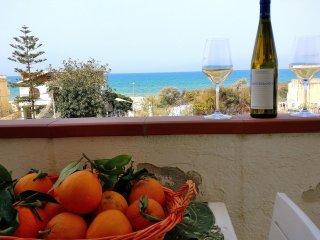 AL053B - Appartamento 8 posti 50 metri spiaggia, climatizzato e con giardino