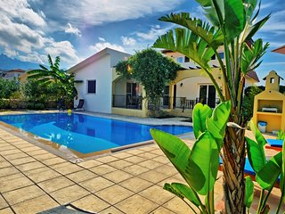 Villa Aroha sleeps 8 people with 4 bedrooms and 3 bathrooms