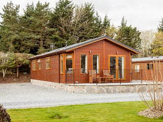 Thistle Lodge - 2 bedroom luxury lodge near Gleneagles, Auchterarder