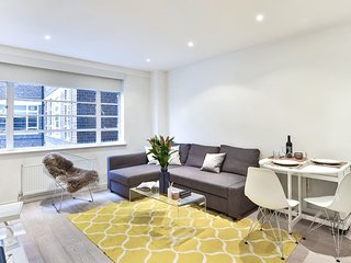 Luxurious and Spacious 1 Bedroom Apartment - South Kensington/ Chelsea