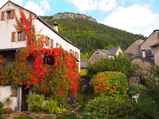 cevennes 3 belles maisons dans ancienne ferme Parc National, joli village,jardin