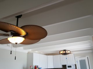 Custom Fans with combined lighting