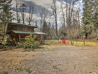 NEW! Cozy 1BR Packwood Cabin w/ Mountain Views!