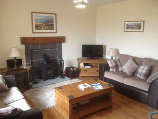Living room with wood burner, leather sofas and loads of island based books.