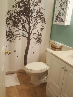 Upstairs guest bathroom..