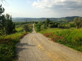 The unmade road to Agriturismo Le Capanne
