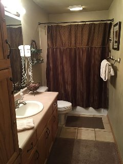 Shower/Jetted Tub
