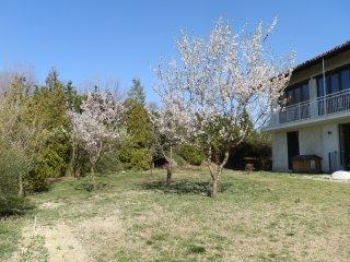 Ca dra Topia (the Grape Pergola House) - Cascina Bricchetto Langhe near Alba.