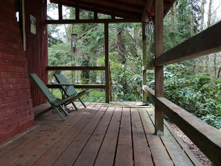 Peaceful dog-friendly cabin w/ wood stove, spacious deck, and grill!