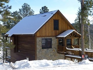 Gold Camp Lodge - New Gilded Mountain Cabin!, Lead