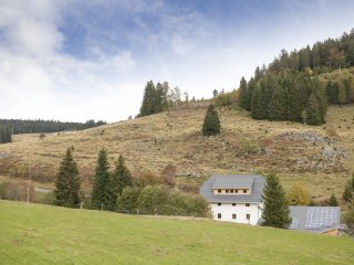 'ALTES GMEINDHUS'  Muggenbrunn-Todtnau -  BLACKFOREST-ECO friendly holiday