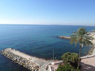 Mediterranean Stare #15483.1, Alicante