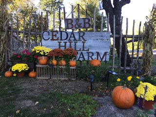 One Bedroom Loft Apartment B at Cedar Hill Farm B & B
