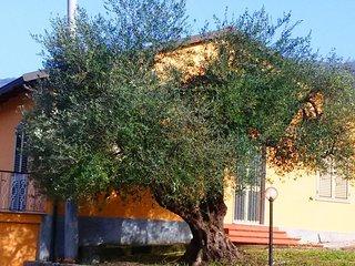 Villa Girasole #15692.1