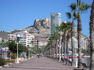 Romantic Alicante #15886.1