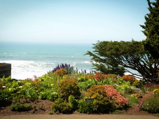 Stylish Wrights Beach Cottage – Views of Ocean, Gardens and Rolling Hills!