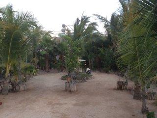 Vista panorámica de los jardines