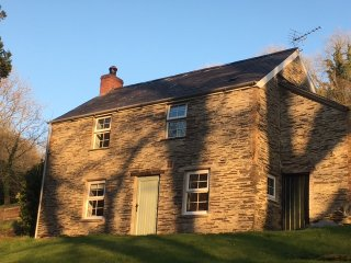 Troedyrhiw Cottage  - Rural character holiday cottage