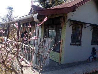 Himalyan bloom home in lap of himalya, Mukteshwar