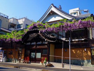 Great location!4min to Sensoji, 5miu bus to Skytree .local public bath, life