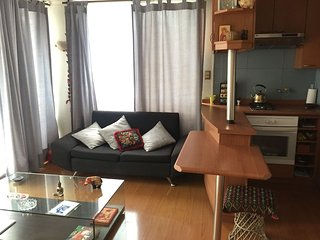 Great apartment in the heart of Providencia