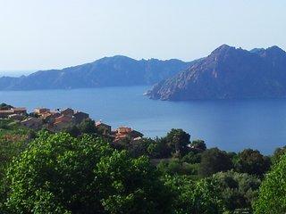 Maison en Corse avec jardin dans village classe (PIANA)