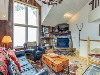 Charming chalet w/ private hot tub, gas fireplace and a true Ski-in/Ski-out!