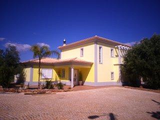 Renting Atractive Villa