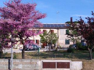Casa Sgaria B&B in azienda agricola, Fano