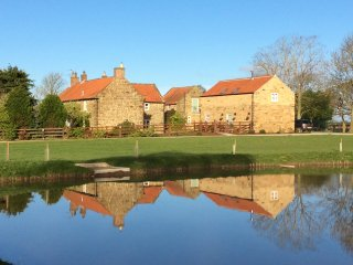 Old Low Moor Farm and cottages from the fishing lake