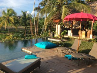 Villa KAROUNA, lush getaway near UBUD, overlooking an amazing view towards the v